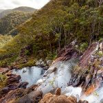Duffer Creek walk, Gibraltar Range National Park