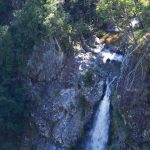 lyrebird-falls-walking-track-01